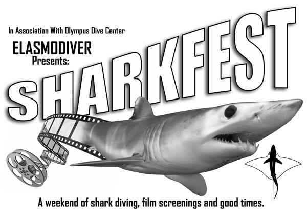 Sharkfest 2010