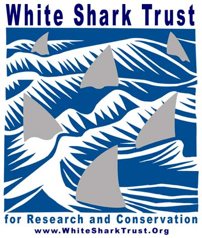 Protecting Sharks - Shark Protection Organizations around the world
